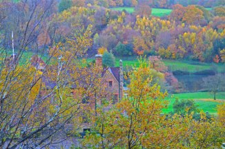 chartwell-autumn-2018-11-11-16.38.29