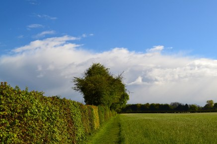 web-1500-hedgerow-storm-cloud-2019-05-04-15.29.09