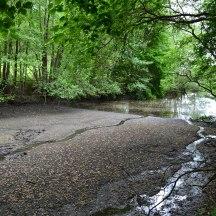 River Darent 'mudflat', point 8-9
